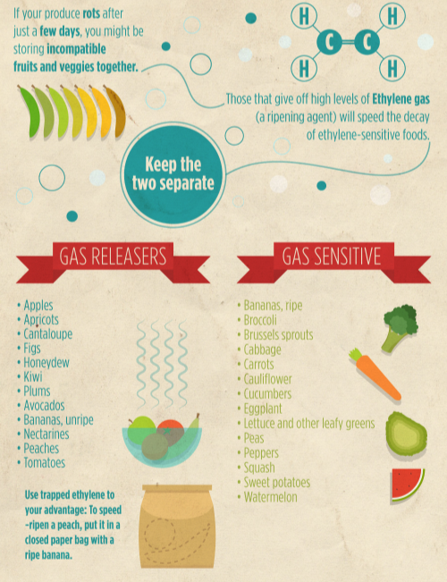 Keep Your Produce Fresh This Summer